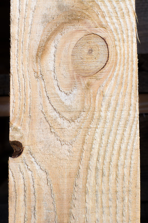 felling: texture of tree felling Stock Photo