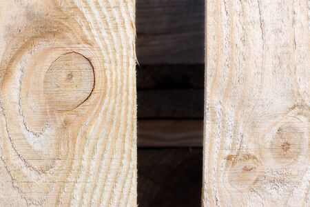 tree felling: texture of tree felling Stock Photo