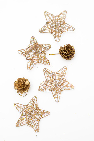 Golden sprouts and fir cones on a white background. Vertical