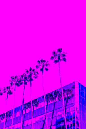 Palm Trees. Trendy gradient of blue, purple and pink colors