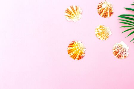 Travel background. Seashells on pink background Banco de Imagens