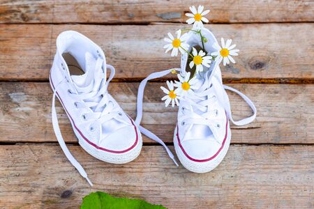 Chamomile and white sneakers on wooden background. Flat lay Banco de Imagens