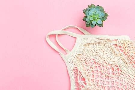 Reusable mesh bag on pink background. Sustainable lifestyle. Succulents plants. Copy space