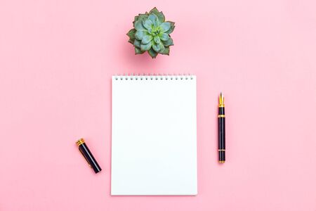 Goal planning. white sheet with pencil and succulents plants on pink background.