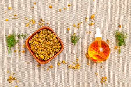Dry chamomile herbs and oil on linen background.  Modern apothecary