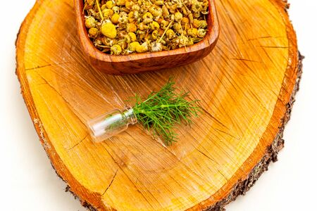 Chamomile with dry chamomile on wooden backgropund. Midern apothecary