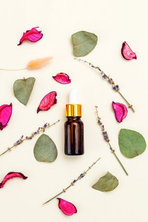 Modern apothecary. Dry herbs  - lavender and  eucalyptus.  Healthy lifestyle Imagens - 134805180