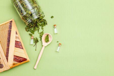 Dried mint, wooden spoon and notebook on a green background. Healthy lifestyle. Copy space Imagens