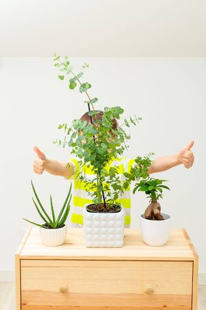 Boy hiding behind flowerpots with flowers. Play. Home gardening. Vertical format