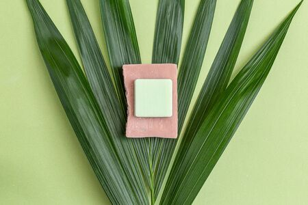 Pink and green natural soap on  palm tree. Minimalism. Still life 스톡 콘텐츠