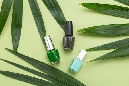Green nail polishes on a green background and green palm leaves. Monochrome green. Minimal Imagens