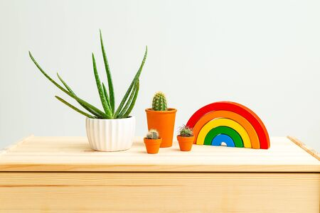 Children's wooden toys rainbow and Houseplant on wooden shelf. Life style