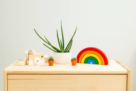 Children's wooden toys rainbow and Houseplant on wooden shelf. Zero waste 스톡 콘텐츠