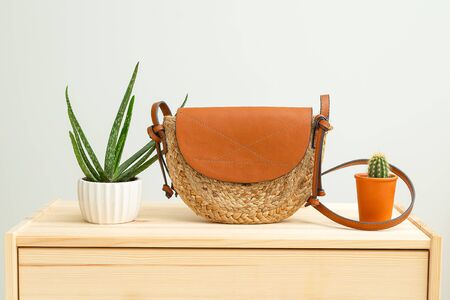 Houseplant and feminine wicker handbag on on a wooden shelf. Minimal.  Organic