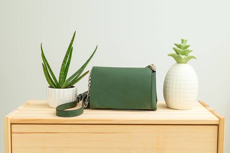 Houseplant and handbag green color on wooden background. Feminine accessories. Life style. Minimal