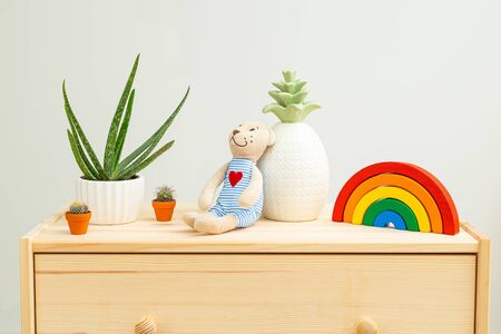 Houseplant and kids toys on wooden shelf. Plant home decoration. Life style