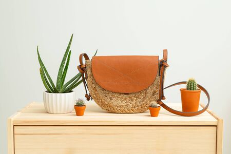 Houseplant and feminine wicker handbag on on a wooden shelf. Organic. Feminine accessories 스톡 콘텐츠