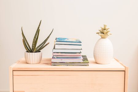 Aloe vera plant, books and figurine pineapple on a wooden shelf. Home gardening. Reading and relax