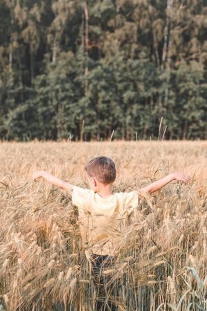 Wheat field. A boy walking on a wheat field. Reconnecting with nature.  Back to nature. Vertical format 스톡 콘텐츠
