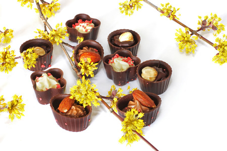 Assorted chocolates. Candies. White chocolate. Nuts. Almond. Dog-tree. dogwood. Yellow flowers. Close-up of a tree branch.