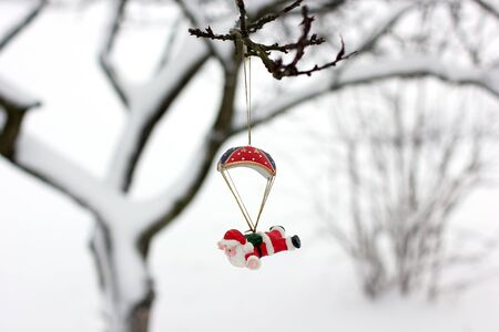 New Years toy on the tree. Winter and snow.