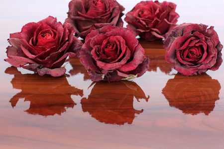 Red roses on a wooden surface. Sluggish red rose Banco de Imagens - 99233764