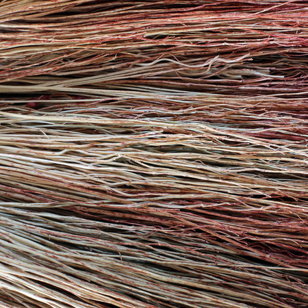 Background of dry branches. Broom close-up Imagens