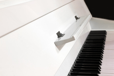 White piano. Piano keys