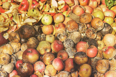 Rotten apples. Background