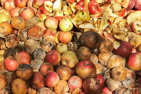 Rotten apples. Background Standard-Bild - 112734789