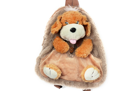 Dog on a white background. Backpack