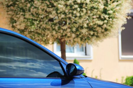 Part of a blue car. Car on a background of tree
