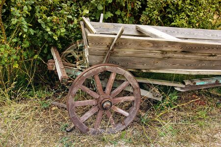 Old cart on the background of bushes