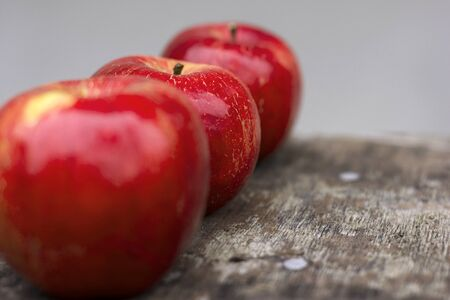 Three red apples on a gray background. Fruit Stock Photo