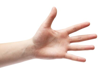Hand on a white background. Palm on a white background. Five fingers