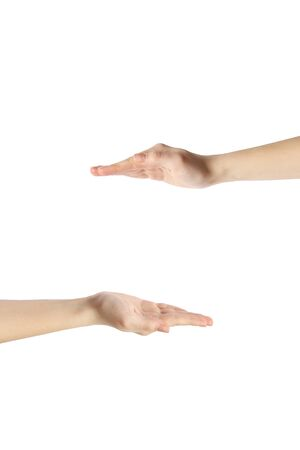 Hands on a white background. Female hands