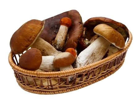 Basket with mushrooms isolated on white background.