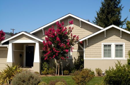 A suburban house in Marin County, California. A nice upscale house under the blue sky with a tree with red blossoms in front.