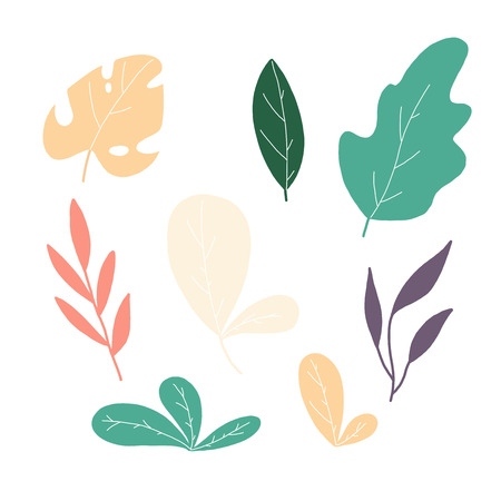 vector tropical illustration