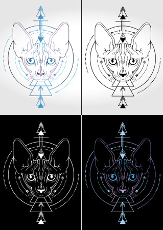 cat sphinx colorful design of tattoos and t-shirts 4   options Vector illustration.