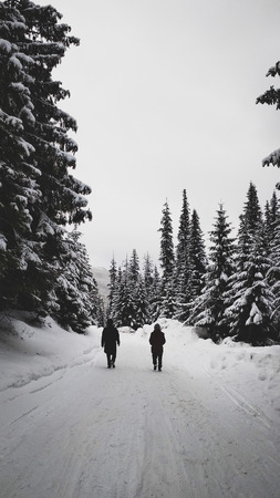 Two men walking on mountain road in snowy forest at winter