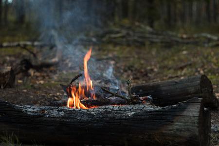 Tourist bonfire in autumn forest