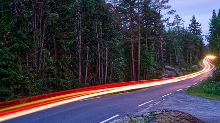 Light trails on a road along side a forrest