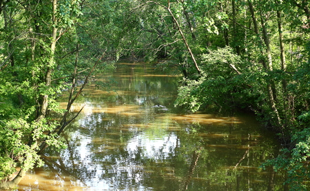 A narrow dark river with wooded banks Stock Photo