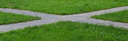 The intersection of two park paths in the green grass Standard-Bild