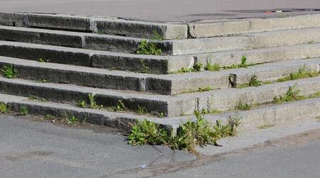 Gray concrete block steps with overgrown grass Banco de Imagens