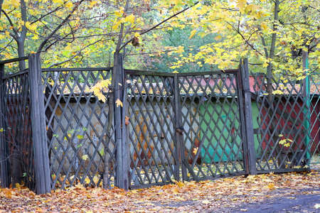 Garages behind a wooden lattice fence with gates in yellow autumn leaves