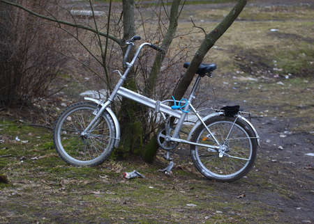 An old bicycle attached to a tree