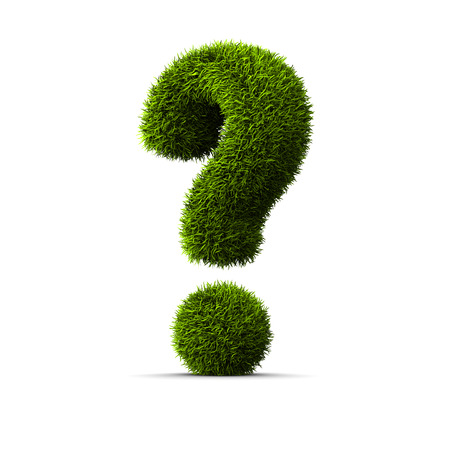 asking question: Concept of grassed question symbol