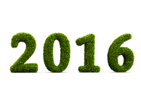 2016 new year grassed concept isolated on white background